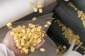Pasta al dente: l'importanza delle materie prime e della sapienza del pastaio
